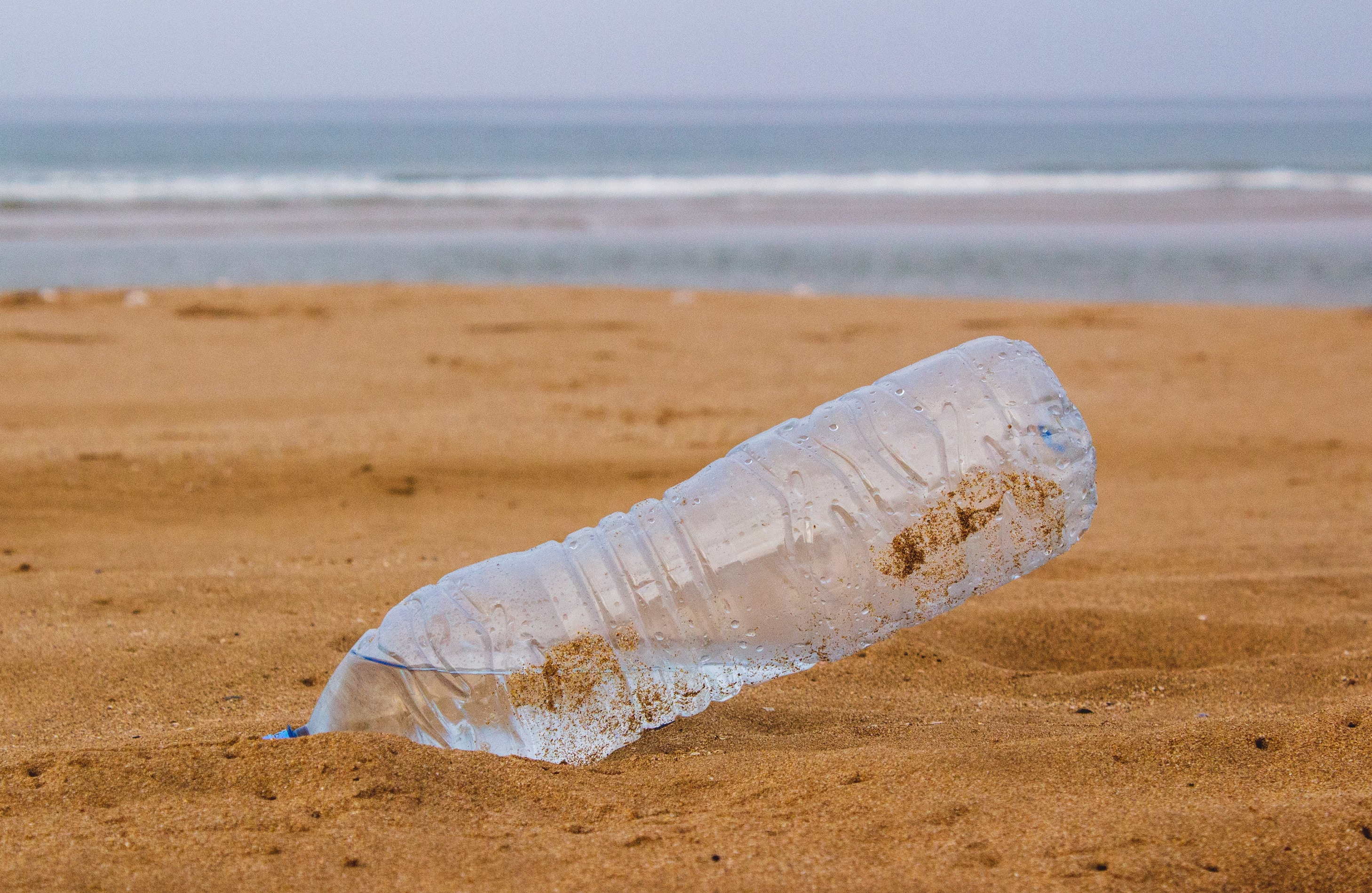 September 15 was California Coastal Cleanup Day